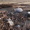 レジ袋とバイオマスプラスチックスを考察 環境への影響は