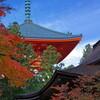 テーマパーク「日本の秘境」の入口へようこそ