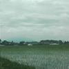 天気怪しかったが筑波山は顔だす。