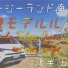 【ニュージーランド 南島】レンタカーで周遊!欲張りモデルルート12日間【後半6日】