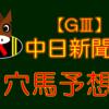 【GⅢ】 中日新聞杯 結果 回顧