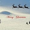 アンダーソン「そりすべり」解説と紹介【クリスマスの超定番曲】