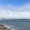サンフランシスコからリゾートの街サウサリートまでサイクリングしてきました