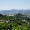 千葉山(和歌山県)ヒルクライム