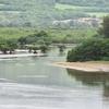 名蔵アンパル(沖縄県石垣島)