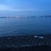 【四回目】横浜・根岸湾シーバスチャレンジ