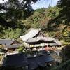日本最大の白い観音さま 奈良・岡寺(龍蓋寺)