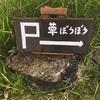 いくでやるで、沖縄短期移住~石垣島おすすめ食事~