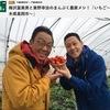 イチゴ3 まんぷく農家メシ!1 栃木県はイチゴの収穫量日本一.中でも真岡市は一大産地です.▽1軒目 うんめぇから食ってみ!絶妙な甘みと酸味.◎おいしいイチゴ:種の間隔が均等で,浮いたり沈みすぎていない.◎イチゴの採り方:「引っ張らない.横にちょっと曲げてください.プチッと音しますよ」◎「食べるときは,ヘタをとってもらって,はい,ヘタの方から食べる」 NHKBSプレミアム 栃木県真岡市 付録:インターネット調査によれば,最もよく食べている果物はバナナでイチゴは5位.しかし,好きな食べ物ランキングでは堂々の1