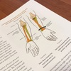 肩の不調と手、肘のワーク
