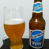 ブルームーンが甘酸っぱ美味い | アメリカ産クラフトビール