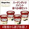 アイスクリームの最安値 2017年度 パイントハーゲンダッツがオススメ!