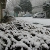 雪の日のセンター