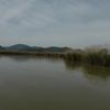 ブラックバス釣行記 西の湖 2014年5月4日