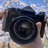 フィルムカメラであそぼう! Canon F-1
