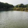 天満池(岡山県児島)