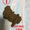 大腸炎4【⚠︎たくさん 画像あり⚠︎】
