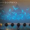 アモンケット――シングルトン攻略!(開始前編)