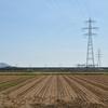 稲刈りの終わった田んぼと昨日の夕日…