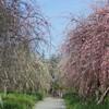 和泉環境リサイクル公園