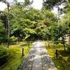 嵐山近くの隠れた紅葉の名所 京都・鹿王院