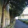 横浜、鶴ヶ峰駅を散策