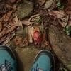 知っておきたいキャンプ靴!防水で安い⁉コスパで選ぶおすすめ10選
