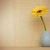 一輪の花を贈ろう