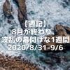 【週記】8月が終わり、波乱の幕開けな1週間 2020/8/31-9/6