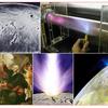 ザ・サンダーボルツ勝手連   [The Electric Universe: Part II Discharges and Scars    電気的宇宙:パートII  放電と傷跡]