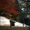【神社仏閣】醍醐寺