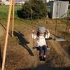 # はっちゃんブログ20