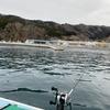 初釣り‼️ヤリイカ第5戦‼️結果は😅