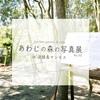 『あわじの森の写真展 No.02 in 淡路島マンモス』の屋外展示が延期になりました