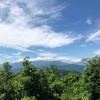 極楽は、高尾山のふもとにあった