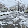 除雪4時間の成果…!