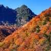 山梨県屈指の絶景紅葉スポット「西沢渓谷」で撮影。【SONY α7Ⅲ】