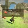 【ゼルダの伝説ブレスオブザワイルド・プレイ日記3】始まりの塔発見でマップをゲット♪( ´▽`)