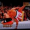 浜ちゃん日記  テレビ特番と日本相撲協会の諸問題に対する組織運営の改善・改革