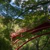 秋を感じに枚岡公園でハイキング。大阪市内からも近く自然が豊かないい場所です。