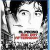 【映画感想】『狼たちの午後』(1979) / アル・パチーノの演技とスキのない脚本を堪能しろ!