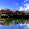亀山湖!私的お勧めのオカッパリポイント2