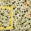 色盲というか色覚異常について