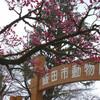 長野県飯田市立動物園