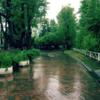 ぼしゃぼしゃと雨