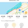 新潟シティマラソン2016走ってきました!(とりあえず結果)