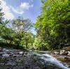 緑仙峡で川撮り!