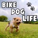 BIKE DOG LIFE
