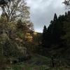 初の里山、低山歩き!11月の経ヶ蔵山