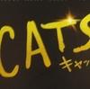 ネズミ年なのに「キャッツ」を観てきました!全員が主役級!不思議がいっぱい!